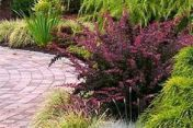 Best pictures_ images and photos about front yard landscaping ideas _homedecor _gardendecor _garden (7)