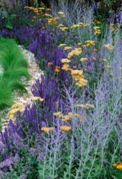 Best pictures_ images and photos about front yard landscaping ideas with perennials _homedecor _gar (5)