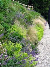 Best pictures_ images and photos about front yard landscaping ideas with perennials _homedecor _gar (53)