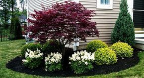 Best pictures_ images and photos about front yard landscaping ideas with porch _homedecor _gardende