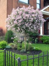 Best pictures_ images and photos about small front yard landscaping ideas _homedecor _gardendecor _ (15)