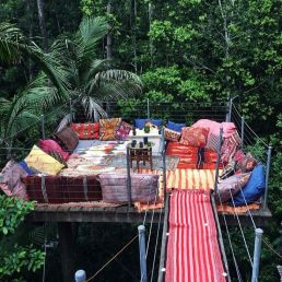 Canopy hideout spot _ South Wales Australia. I like the platform and sitting in the trees_ but would prefer a chai