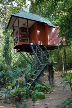 DIY Treehouse Ideas For To Build A Treehouser 11