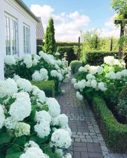 Four Seasons in a Gorgeous Denmark Garden – Blue and White Home
