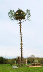 Ft. Lebanon Khaki Scout_ Well_ where would you build it_ Scout Master Ward_ I would build it....lower_