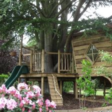 Great Tree House Ideas Trends For 2018 _ Easy to Build 2019 _treehouse _backyardideas _outdoorliving