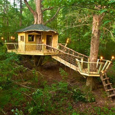 Great luxury tree houses designs with cool pictures. _TreeHouseDecor _treehousekids _frontyard _DreamRoomDecor