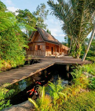Hartland Estate_ Ubud_ Bali_ Indonesia.