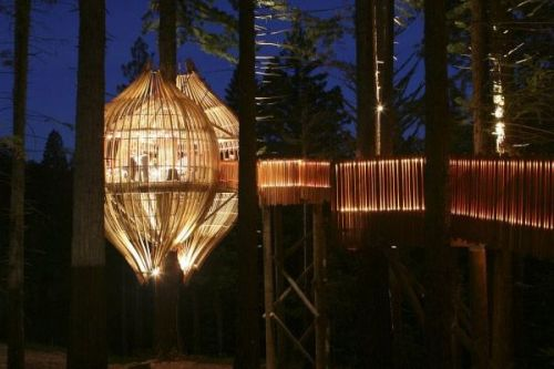 I would love to eat here_ The Yellow Treehouse Restaurant in Auckland_ New Zealand.