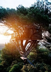 If I have kids_ hopefully they_ll want a tree house... you know_ so THEY can play in it.