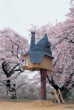 Japanese architect Terunobu Fujimori_s one_legged teahouse looks surreal amid a cloud of cherry blos.