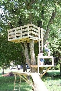 LOTS and lots of tree house ideas