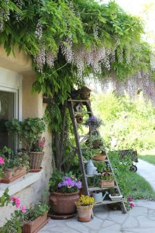 Ladder Plant Stand with Birdhouses & other cottage style garden ideas.