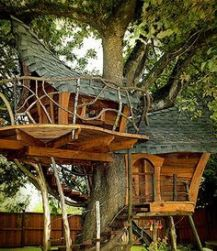 Love treehouses_