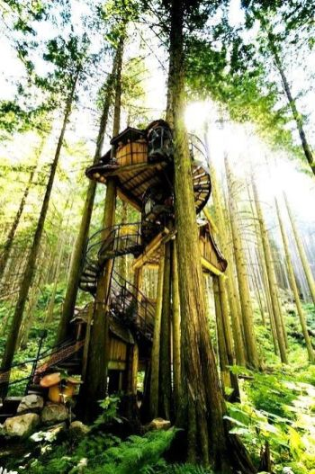 One of the largest treehouse_s in North America...and one of our personal favorites. The best part_ visitors are