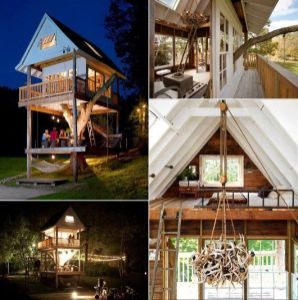 Tree house homes