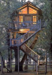 Tree house ideas for adult 2019 _treehouse _moderntreehouse _backyardideas _homeoutdoor _homedecor20