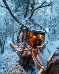Tree house in Maine _ Imgur