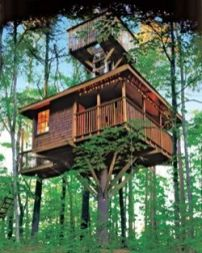 _Treehouse And A Half___Built over time by elaborating on a simple platform__Two DIY enthusiasts cra...