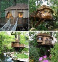 Treehouse wonderland_ ya again_ gonna be for me_ and my kids can come if they are good....