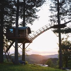 Two Epic Tiny Treehouses & a Skate Park in Skamania _ Tiny Homes _ Curbed Seattle