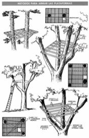 Una CABAñA en el ARBOL del PATIO o construida sobre postes _ Mi Mecánica Popular _ _arbol _cabana _c