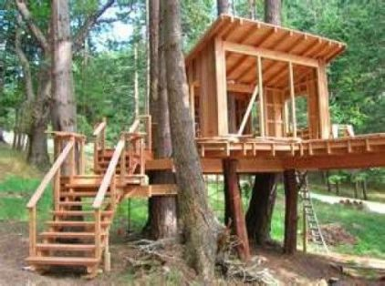 Want to lear how to build the best tree house for your kids_ Here are the instructions and plans to .