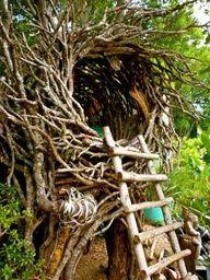 natural music backyard playground _ Natural Playground Ideas