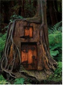 this is a cool treehouse entrance if it leads to a larger house underground with skylights at ground