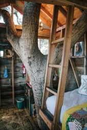 urbanoutfitters_This treehouse is our dreamhouse. (Photo by Daniel Dent)