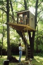 we could make a catwalk from where the treehouse is to the big pine tree in the front yard