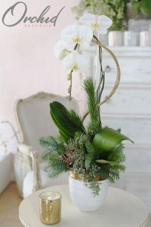 Flower_Decoration (67)