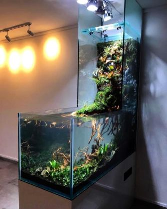 Fish_Tank (11)