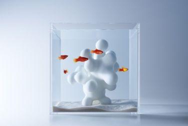 Fish_Tank (2)