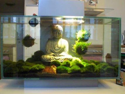 Fish_Tank (48)