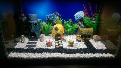 Fish_Tank (64)
