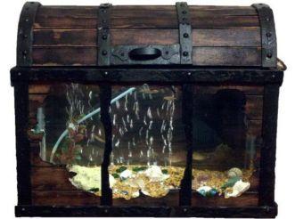Fish_Tank (71)