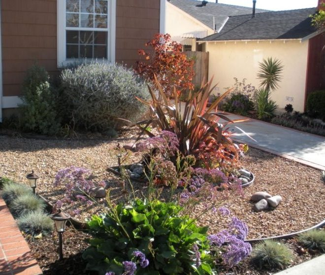 Make Your Backyard More Appealing with Drought Tolerant Landscaping Design