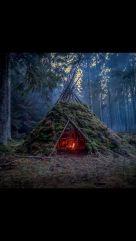 Primitive_Houses_and_Bushwak (16)