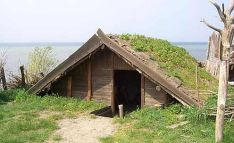 Primitive_Houses_and_Bushwak (41)