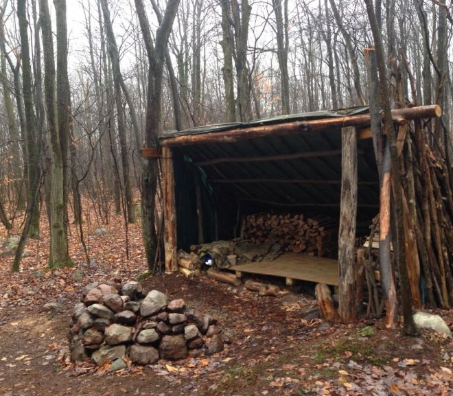 Unbelievable Primitive Houses and Bushwhack Ideas