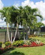 Fabulous-Tropical-Garden-Design-Ideas-That-You-Definitely-Like-09
