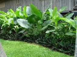 Fabulous-Tropical-Garden-Design-Ideas-That-You-Definitely-Like-18