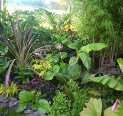 Fabulous-Tropical-Garden-Design-Ideas-That-You-Definitely-Like-19