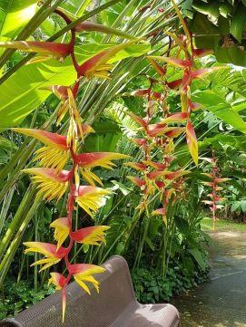 Fabulous-Tropical-Garden-Design-Ideas-That-You-Definitely-Like-20
