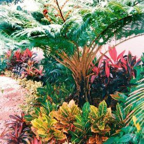 Fabulous-Tropical-Garden-Design-Ideas-That-You-Definitely-Like-27