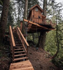 Wonderful-Treehouse-Design-Ideas-To-Beautify-Your-Backyard-25