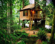 Wonderful-Treehouse-Design-Ideas-To-Beautify-Your-Backyard-32