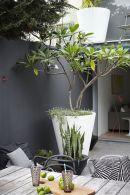 Bondi-balcony-garden-desire-to-inspire-desiretoinspire_net
