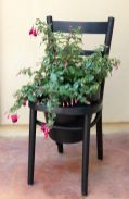 Chair-planted-diy